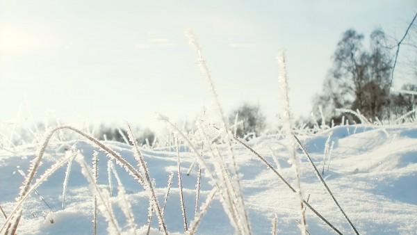ice-min.jpg