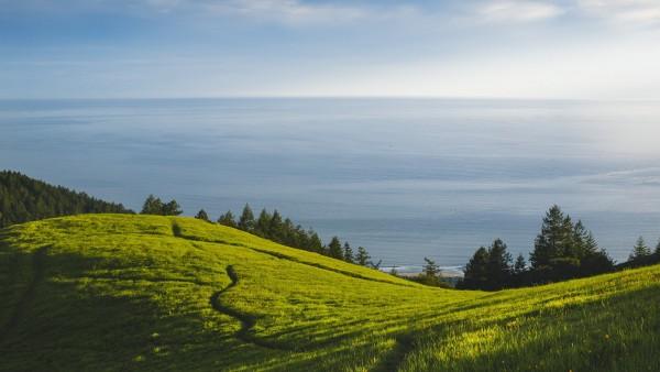 hill-min.jpg