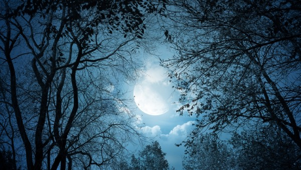 moon-min.jpg