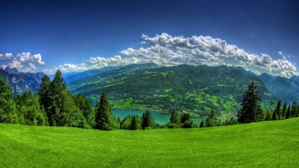 nature-min.jpg