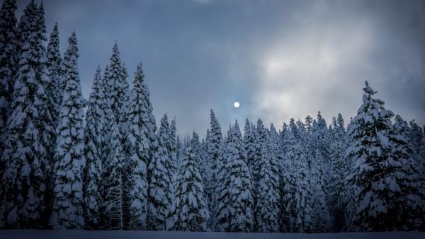winter-min.jpg