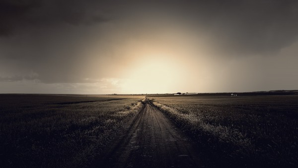 fieldroad-min.jpg
