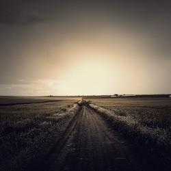 fieldroad-min