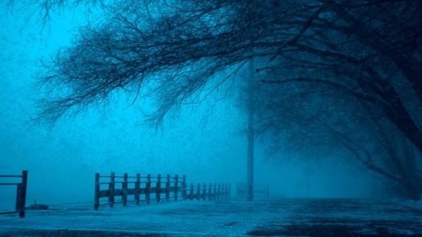 winternight-min.jpg