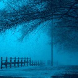 winternight-min