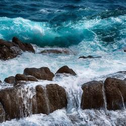 searocks-min